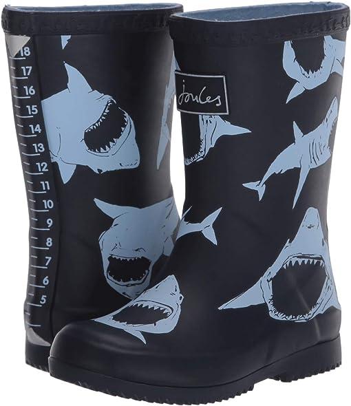 Navy Bullhead Sharks