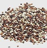 MARY LINDA BIO Quinoa Korn, tricolor, schwarz-weiß-rot, 5kg