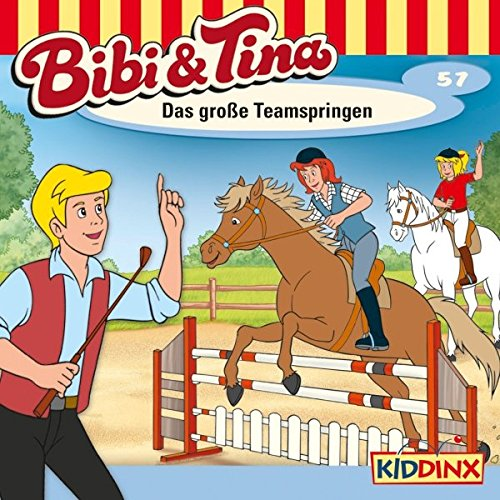 Das große Teamspringen audiobook cover art