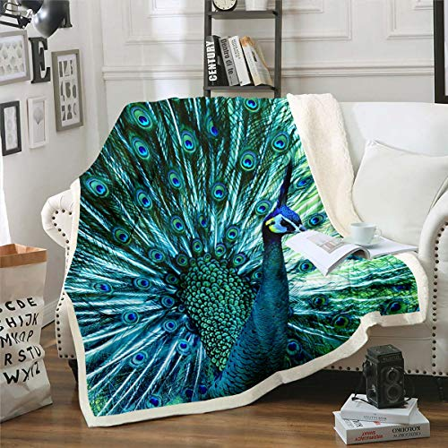 Peacock Sherpa Blanket Teal Wild Animal Theme Fleece Throw Blanket Kids Boys Girls Peacock Feathers Design Flannel Plush Blanket Soft Microfiber Fuzzy Blanket for Sofa Bed Couch 50'x60'