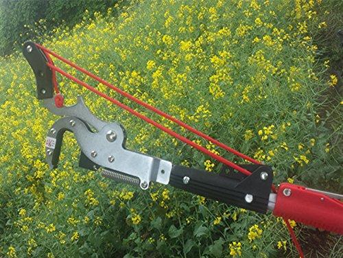 Le NOUVEAU Coupe droite 4 Ronds haute altitude de cisaillement d'élagage outils de jardin (ciseaux + Scie + Corde sans barre)