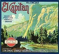 ERZAN30x30cmメタルポスター壁画ショップ看板ショップ看板サンディマスエルキャピタンオレンジクレートラベルアート家の装飾ブリキ看板