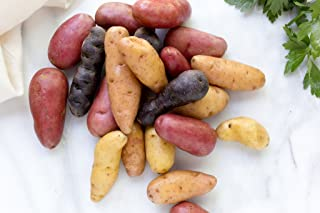 Simply Seed - 15 Piece - Fingerling Potato Seed Mix - Non GMO - Organic Grown - Order Now For Spring Planting