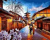 WYTTT Malen Nach Zahlen DIY Home Geschenk Gemälde Nach Zahlen Malen Nach Zahlen Für Wohnkultur Ölbild Gemälde Tokio Rahmenlose 50X65 cm