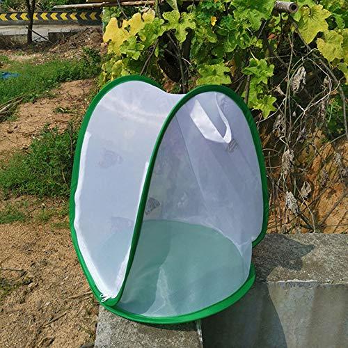 2pcs Insekten Und Schmetterlingslebensraum Käfig Pop-up Design Zusammenklappbar Insekten Netzkäfig Mit Reißverschlussschutz Beobachtungspflanze Im Freien Und Kleintierterrarium Pop Up Open 33 37cm