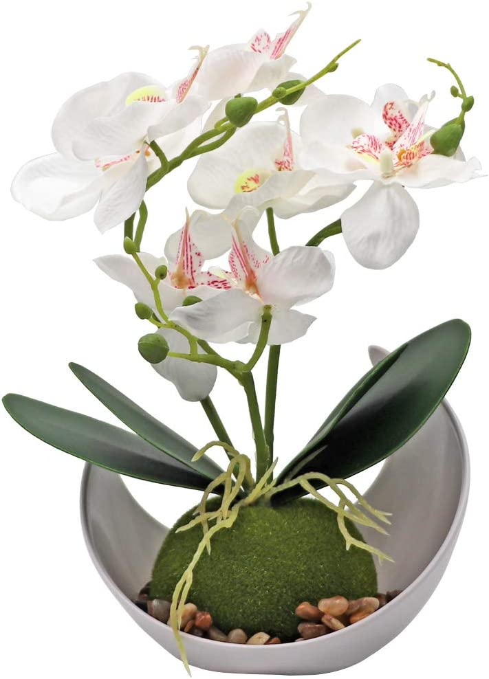 LIUCOGXI Artificial Potted Orchid Plant Arrangement with Vase White for Home Kitchen Table Centerpiece Living Room Bathroom Office Indoor Decoration