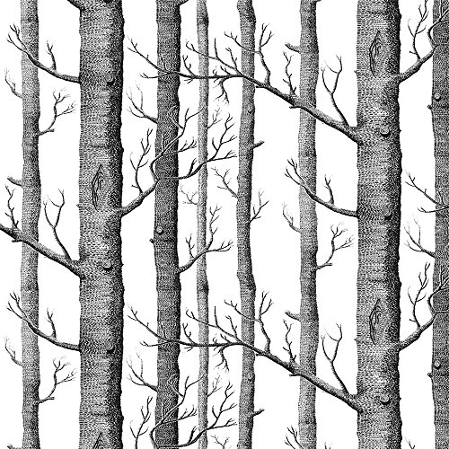 Akea Modern Birch Tree Wallpaper Roll, Black and White Forest Trunk, for Living Room, Bedroom, TV Background etc, Size 20.8inch x 32.8ft, 57 sq.feet