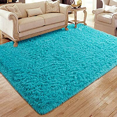 Flagover Soft Fluffy Modern Living Room Area Rugs Shaggy Plush Non-Slip Bedroom Carpets Suitable for Children Room, Baby Room, College Dorm and Nursery Home Decor Floor Rugs 4x6 Feet Teal Blue