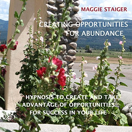Creating Opportunities for Abundance cover art