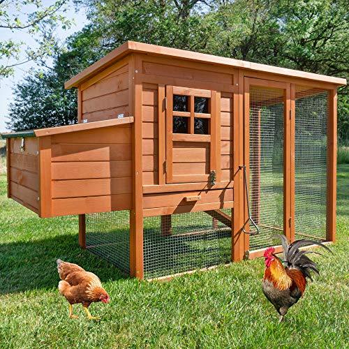 zooprinz große Hühnerstall mit Nistkasten - aus massivem Vollholz und stabilem Draht - Hühnervoliere schnell zu reinigen - witterungsbeständig Dank hochwertiger Lasur (Hühnerstall)