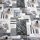 Stoff Baumwollstoff Fotodruck Eisbär Bär weiß grau