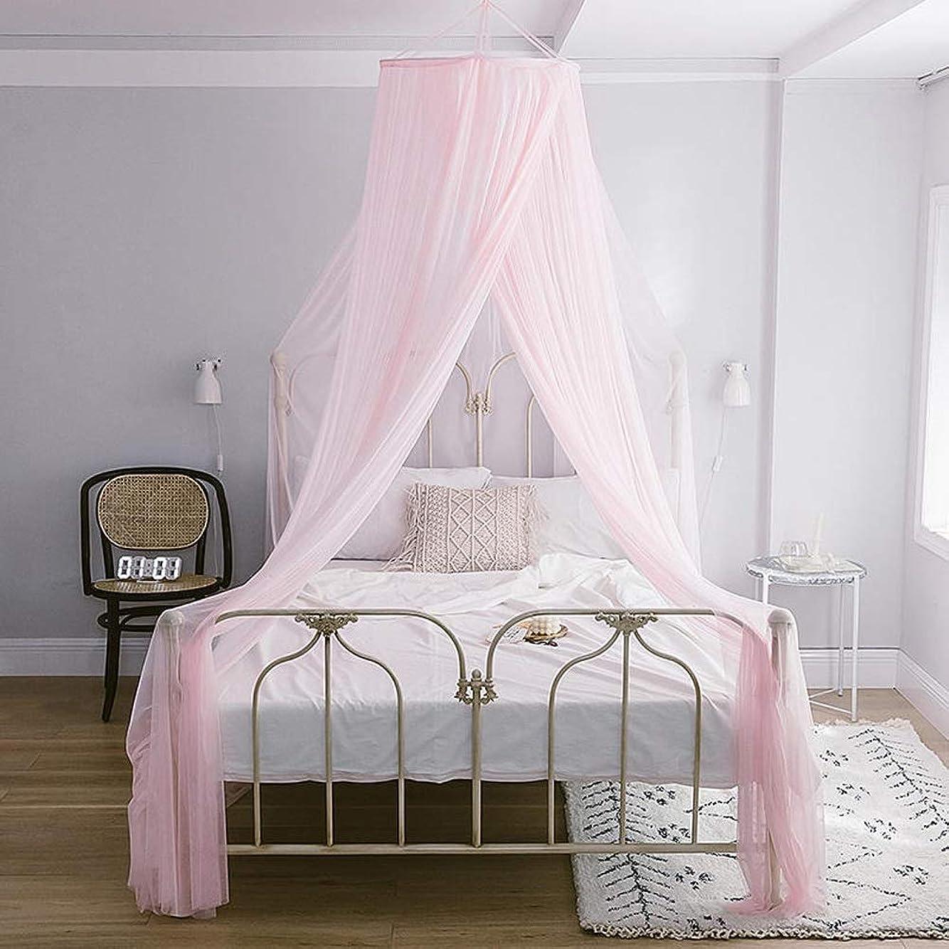 数値トレーニング解き明かす王女の蚊帳のレース、子供のためのドームベッドのおおいは昆虫の保護屋内/屋外の装飾的な高さを飛ばします (Color : ピンク, Size : 2.0m (6.6 feet))