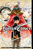 Black Clover, Vol. 2: Those Who Protect