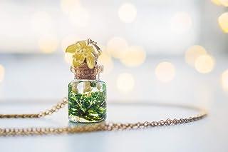 collana vera di muschio, collana di fiala di muschio, collana di bottiglie di vetro, gioielli di terrari in miniatura, col...
