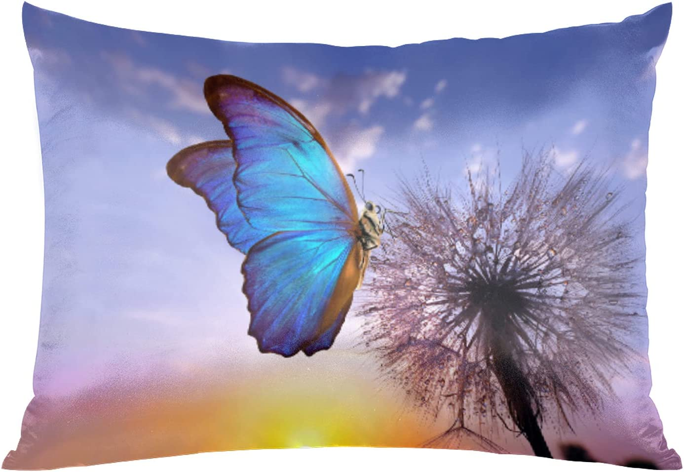 Satin Pillowcase for San Francisco Mall Hair and Si Dandelion Sunset Skin Butterfly low-pricing