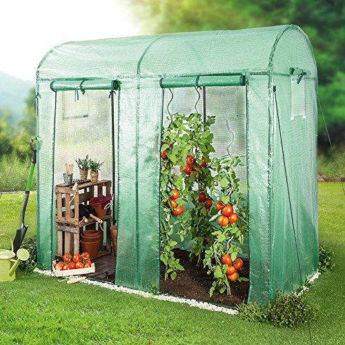 Gaardi Tomatengewächshaus mit 2 Toren - 200 x 100 x 180/150 cm - Folien Gewächshaus mit Runddach