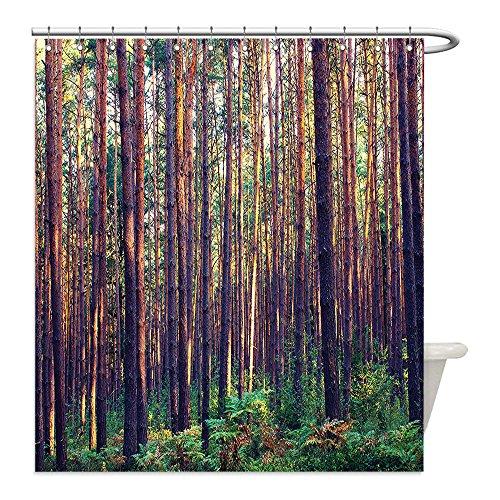Liguo88 - Cortina de ducha impermeable de poliéster para decoración de la casa en el bosque de la mañana, árboles altos y troncos, color verde y marrón