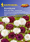 Kiepenkerl Centaurea cyanus (Kornblume Black and White) 0-0cm / 1 Packung (Blumenzwiebeln, Sommerblüher (Aussaat im Frühjahr))