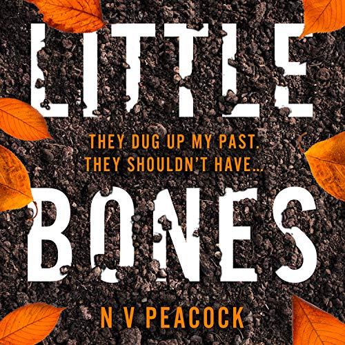 Little Bones cover art