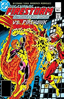The Fury of Firestorm (1982-1990) #17 by [Gerry Conway, Pat Broderick, Dick Giordano, George Tuska, Rodin Rodriguez, Carl Gafford]
