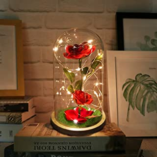 URBANSEASONS Beauty and The Beast Rose,Red Silk Rose and Led Light with Fallen Petals in Glass Dome on Wooden Base, for Valentine's Day Wedding Anniversary Mother's Day Birthday Party