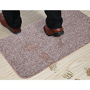 Sofhom Indoor Doormat Super Absorbent 20 x 31.5 , Non-Slip Entrance Rug Carpet Floor Mats Washable Shoes Scraper Door Mat with TPR Backing for Front Door Dirt Trapper(Coffee)