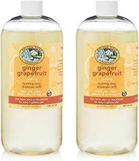 Oregon Soap Company - Foaming Liquid Hand Soap REFILL, Made with USDA Certified Organic Oils (32 oz (2 Pack), Ginger Grape...