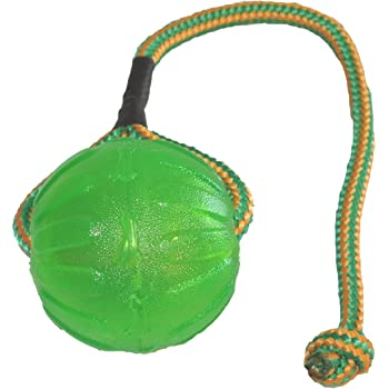 Starmark Everlasting Fun Ball on a Rope Dog Toy