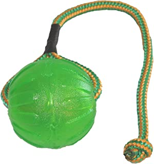StarMark Everlasting Fun Ball on a Rope Dog Toy