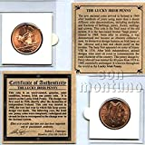 THE LUCKY IRISH PENNY - Authentic Uncirculated Half Dollar Sized Penny with Classic Harp & Hen-and-Chicks Motifs from Ireland in Mini-Folder with Story Card + Certificate of Authenticity