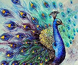EOBROMD 5D Diamond Painting Kits DIY Rhinestone Embroidery Cross Stitch Arts Craft for Home Wall Decor Peacock 12x16inch