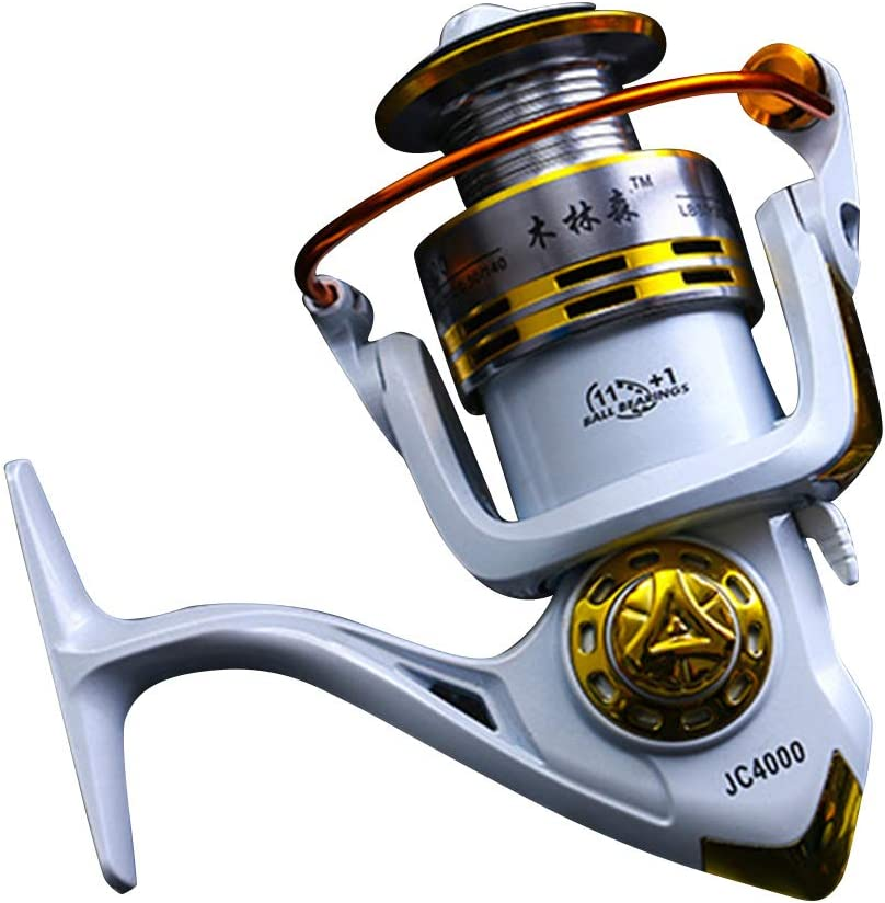 BNSYY Fishing Bargain sale Reel Spinning Perfect Freshwater for and Ranking TOP19 Sal