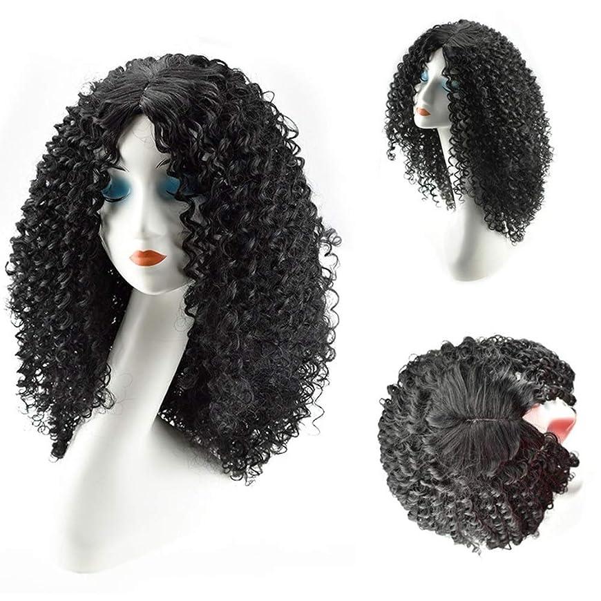 傑作無効はずHOHYLLYA 女性のための人工毛ロング変態巻き毛のかつら黒アフリカ波耐熱繊維かつらパーティーかつら (色 : 黒)