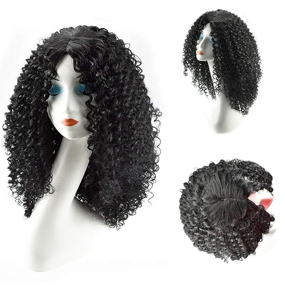 デュアル祝福靄BOBIDYEE 女性のための人工毛ロング変態巻き毛のかつら黒アフリカ波耐熱繊維かつらパーティーかつら (Color : ブラック)