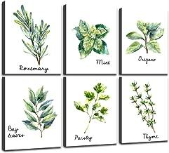 Yatsen Bridge Herbs Kitchen Wall Art Print Set of 6 Framed Prints Bay Leafes Thyme Mint Rosemary on Canvas Botanical Canvas Prints Wall Art for Home DéCor 8