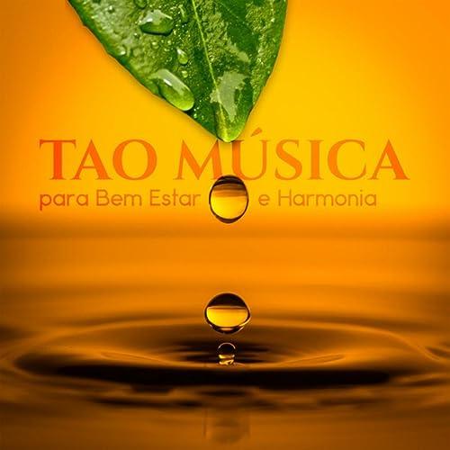 Yoga Terapia by Meditação Música Ambiente on Amazon Music ...