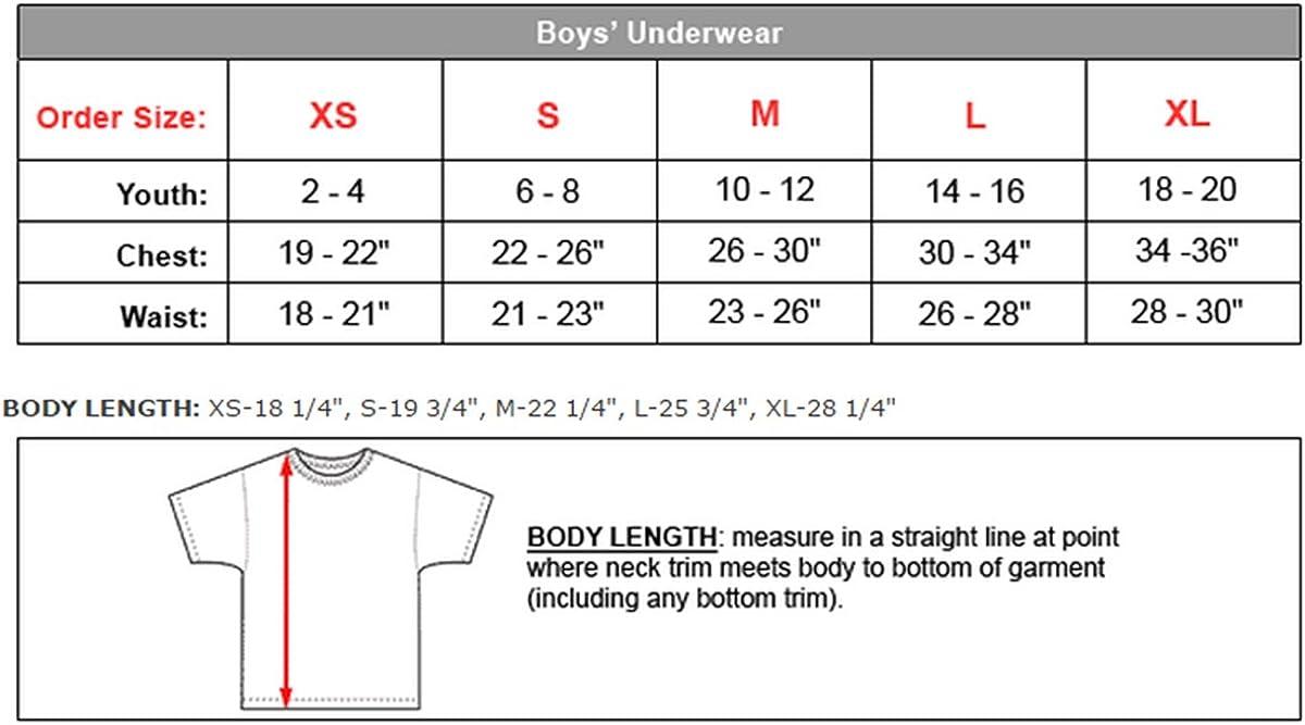 Hanes ComfortSoft Tagless Boys'Crewneck T-Shirt 3-Pack_White_X-Large