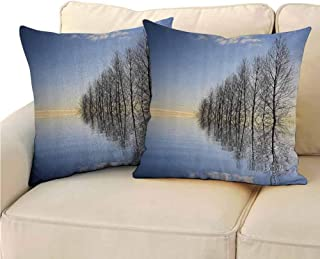 QIAOQIAOLO Pack of 2 Bedroom Pillowcase Lake House Decor Double-Sided Printing 13.5x13.5 inch Trees on Top of The Frozen Lake in The Winter Scenic Forces of Nature Art Print Blue Brown