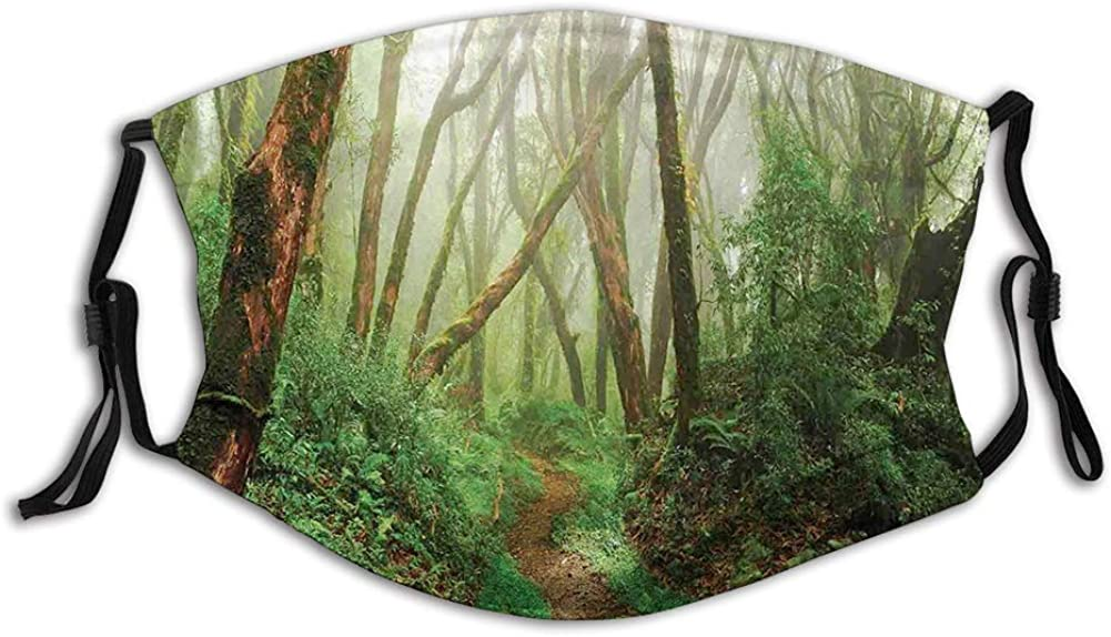 Spooky Tropical Exotic Fog Jungle in Rainforest in Nepal Windproof Face Mask,Reusable,Washable Cloth,Face Cover,Cover for Men Women