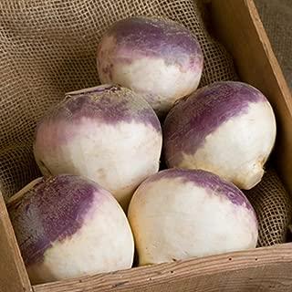 Rutabaga Helenor F1 USDA Certified Organic Vegetable Seed - 250 seeds