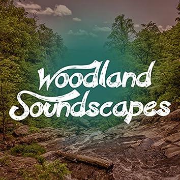 Woodland Soundscapes
