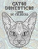 Gatos domésticos - Libro de colorear