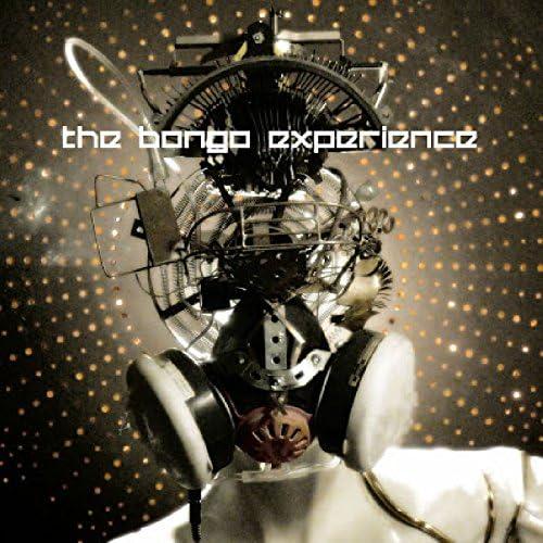 The Bongo Experience