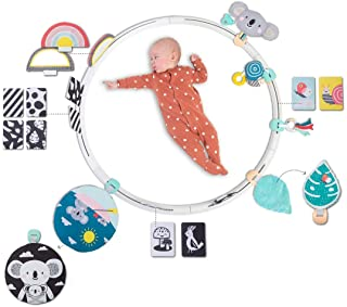 TAF Toys All Around Me Activity Hoop, Set of 1