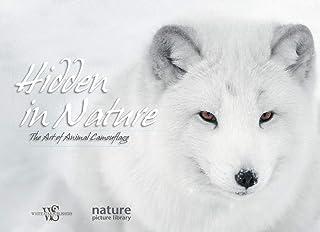 Hidden in Nature: Art of Animal Camouflage