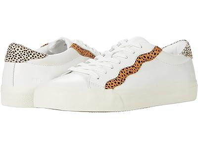 Madewell Sidewalk Low Top Sneakers in Spot Dot