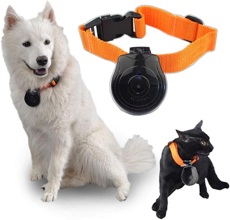 DJLOOKK Digital Pet Collar Cam Camera DVR Video Recorder Monitor For Dog Cat Puppy