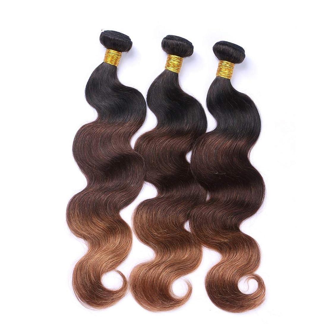 服を洗う鳩限界WASAIO 黒人女性用ウィッグ - 1B / 4月30日3トーンカラー100グラム/ PCS(10