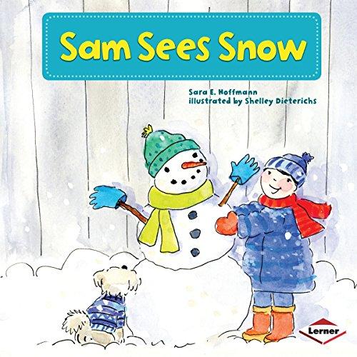 Sam Sees Snow copertina