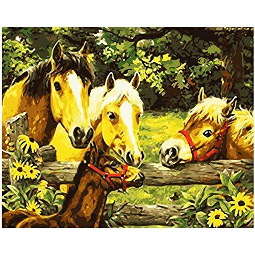 CNstory Malerei Für Erwachsene Nach Anzahl Malvorlage Warme Pferde Im Zaun Tierhochzeit 40x50cm with Frame
